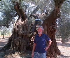 On. Scanderebech in Puglia:Preoccupato per crisi dell'agricoltura e industria manifatturiera