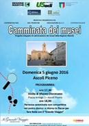 """Il 5 giugno ad Ascoli Piceno la sesta """"Camminata dei musei"""""""