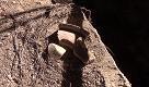 Ischia, rovine greche nellincuria a Lacco Ameno - La Repubblica